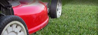 Lawn Mowing in Sunshine Coast